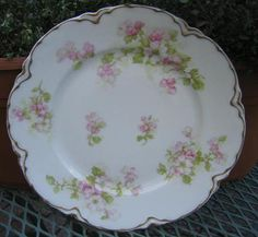 Hey, I found this really awesome Etsy listing at https://www.etsy.com/listing/164566201/half-price-haviland-sale-antique
