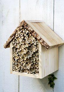 Chalet voor bijen en andere insecten.