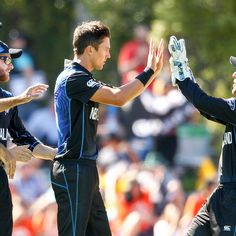 New Zealand vs Scotland: Highlights, Scorecard and Report from Cricket World Cup