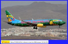 Tuifly Boeing 737-800 (D-ATUJ)