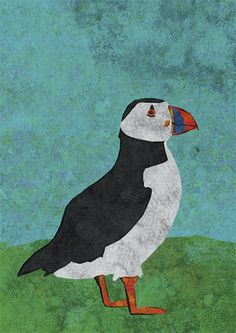 Puffin Love Via Illustrators Australia