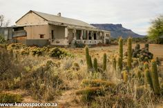 Karoo architecture is a natural outcome of building for desert conditions with few materials. The appeal remains in its simplicity and elegant pragmatism. Pioneer House, Derelict House, Beautiful Homes, Beautiful Places, Rare Historical Photos, Old Farm Houses, Modern Buildings, Abandoned Houses, Rustic Kitchen