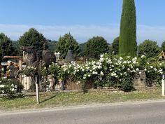 #outdoordining #alfrescodining#casualdining #gazebo Italian Country Decor, Al Fresco Dining, Outdoor Dining, Gazebo, Al Fresco Dinner, Kiosk, Pavilion, Cabana