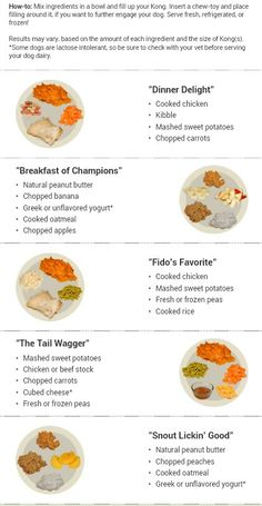 Homemade Dog Food A Variety of Kong Recipes to Try - Does your dog love playing with their kong? Try one of these recipes that will make them want to tear apart their kong to get to the food inside. Brain Games For Dogs, Dog Games, Dog Treat Recipes, Dog Food Recipes, Shih Tzu, Kong Treats, Dog Enrichment, Enrichment Activities, Elderly Activities