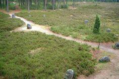 The Nazi Temple of Pomerania: Exploring the Mysterious Odry Stone Circles