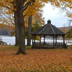 The #Gazebo at #EssexPark. #EssexWalkingTour #LetsMeetCT #DestinationCT #ExploreCT @ctvisit #NewEngland #Fall #Autumn #Connecticut #November #EssexCT #CTriver #ConnecticutRiver #VisitCT #instameet #InstameetCT
