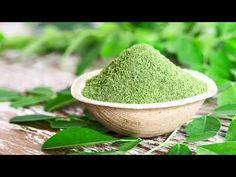 Moringa Powder (moringa Oleifera) In Coconut Bowl With Original Fresh Moringa Leaves What Is Moringa, Moringa Benefits, Moringa Leaves, Health Benefits, Health Tips, Superfoods, Troubles Digestifs, Moringa Powder, Moringa Oleifera