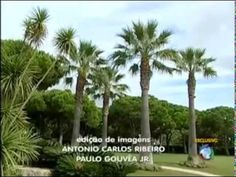 Ayrton Senna House, Algarve, Portugal #Senna