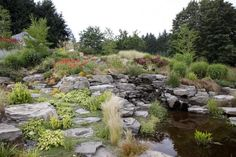 Architect Michael McCulloch intended the use of rock around the water feature to appear as though it was revealed from just beneath the surface of the soil