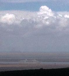 Barco a la vista desde larboleda