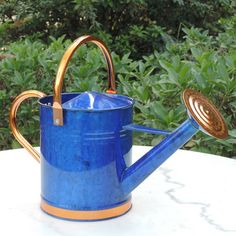 Features:  -Deluxe collection.  -Brass finished rose to allow precise irrigation.  Primary Material: -Metal.  Rust Resistant: -Yes.  Capacity: -1 Gallons. Generic Specifications:  -Capacity: 1 Gallon.