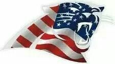 God bless America and the Carolina Panthers! Best Football Team, Sport Football, Football Season, Panther Football, Panthers Game, Carolina Panthers Football, Nc Panthers, Carolina Pride, Carolina Blue
