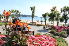 Promenade at St Brelade's Bay by Paul  Henderson on 500px