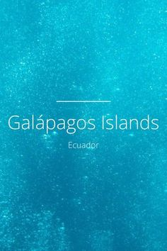 Amazing story about the Galapagos Islands - by Liz Poli on Steller