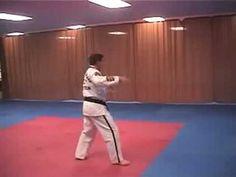 Sheldon Family Taekwondo ATA Blue Belt Form