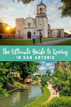 Texas Vacations, Vacation Places, Vacation Destinations, Dream Vacations, Vacation Trips, Vacation Spots, Places To Travel, Visit San Antonio, Dallas