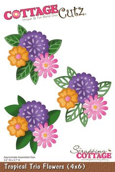 Cottage Cutz - Die - Tropical Trio Flowers