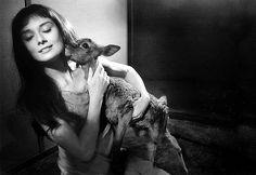 Olağanüstü Kadınlar Serisi: Atanamayan Tanrıça Audrey Hepburn