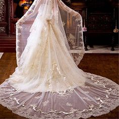 Newdeve Champagne 3M 1T Bridal Veils Lace Edge Long Hair Falls (Champagne)