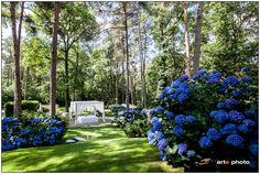 Chi lo dice che il blu sta bene solo al mare ? Splendide ortensie nel parco della Cascina Pelada