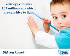 Your eye is an extremely complex muscle. #DidYouKnow #EyeFacts