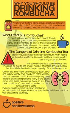 Why You Should Be Drinking Kombucha – Positive Health Wellness Infographic