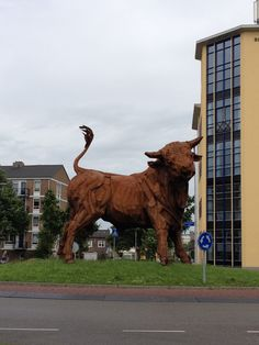 """Amersfoort - 2012. A short walk from the Kamper Binnenpoort along """"De Kamp"""" will take you to this magnificent bull statue. What this photo doesn't show is that there is what appears to be a metal turd lying in the grass behind this animal..."""