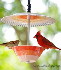 Do you love feeding birds? Making DIY crafts that are both fun & functional? Here are 20 fanciful DIY bird feeders to pep up your yard & fill up the birds.