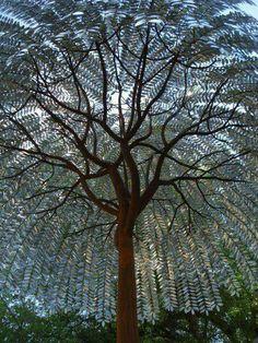 Tree sculpture X