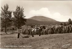 Tynset mot Trosfeller 1950-tallet- foto Normann