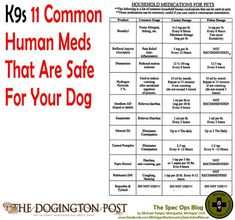 Human medicines safe for dogs