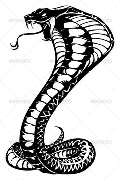 Buy cobra by namistudio on GraphicRiver. cobra illustration (open with or above, coreldraw) Tribal Snake, Arte Tribal, Snake Art, Bild Tattoos, Leg Tattoos, Arm Tattoo, Tribal Tattoos, White Tattoos, Tribal Tattoo Designs