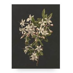Print op hout White Flowers S