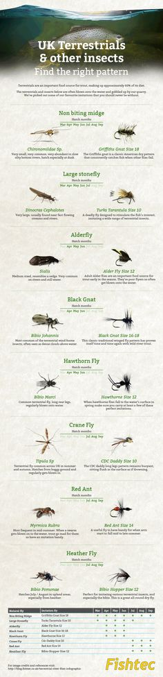 Fishtec uk terrestrial fly fishing infographic