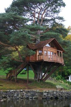 The best of both--a log cabin in a tree.