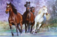cuadros-de-caballos-galopando-en-el-mar