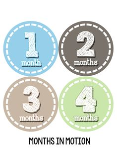 Baby Boy Monthly Milestone Stickers Style #077