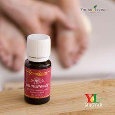 ImmuPower™ is a powerful blend of essential oils that create a fragrant and protective haven while increasing positive energy.Ingredients:Hyssop (Hyssopus officinalis), mountain savory (Satureja montana), cistus (Cistus ladanifer), ravensara (Ravensara aromatica), frankincense (Boswellia carteri), oregano (Origanum compactum), clove (Syzygium aromaticum), cumin (Cuminum cyminum) and idaho tansy (Tanacetum vulgare).