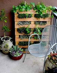 Herb Garden Idea. I have access to free pallets, plus I don't want to till up any earth to create a bed (living in a rental)... PLUS my husband is a carpenter (In case I find myself inept)...