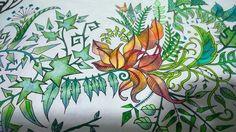 Floresta encantada folhas  Jardim secreto