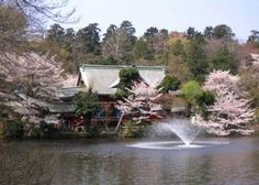 井の頭恩賜公園, Kichijoji, Tokyo