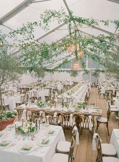 An Elegant Italian Courtyard Wedding at the Bride's Family Home White Tent Wedding, Outdoor Wedding Reception, Marquee Wedding, Tree Wedding, Wedding Art, Wedding Venues, Wedding Ideas, Wedding Bells, Garden Wedding