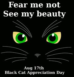 I have one black kitty and one black  white tuxedo kitty. We lost  aother black furby a few years agobut he is still in our hearts  thoughts. We LOVE ALL kitties! We don't discriminatye cuz black cats are incredibly loving, and they crave luv and attention just like any kitties of other colors..K♥