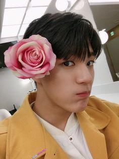 Nct 127, Ntc Dream, Zen, Johnny Seo, Jeno Nct, Jisung Nct, Flower Boys, Kpop, Winwin