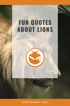For the lion lover. Check out these inspirational quotes about lions. Click through now. #spiritanimals #animaltotems Lion Spirit Animal, Find Your Spirit Animal, Inspirational Lion Quotes, Between The Lions, Like A Lion, Animal Totems, Best Quotes, Check, Animals