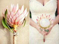 Tulle e confetti - Bouquet monofiore protea - Alchimie floreali Protea Wedding, Bush Wedding, Single Flower Bouquet, Flower Bouquet Wedding, Flower Bouquets, Bridesmaid Bouquet, Bridal Bouquets, Wedding Flower Design, Floral Wedding