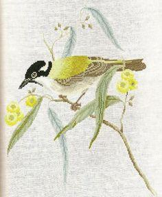 Gallery.ru / Фото #106 - 83 - OlgaHS Australian Birds, Cross Stitch Bird, Hand Embroidery, Needlework, Butterfly, Animals, Bird Cage, Gallery, Beads