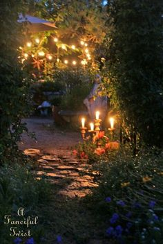 Summer Magic in the Night Garden...