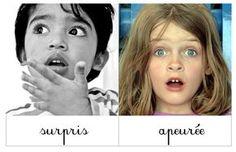Bruxelles-Les-Oies: Emotions: Cartes de nomenclature à imprimer