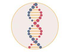 ADN Loop! by Alejandro Imondi